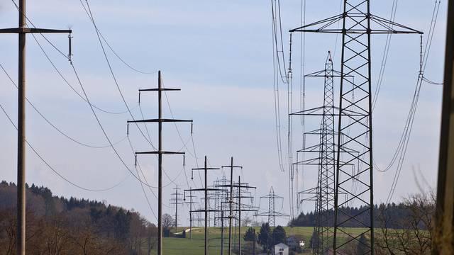 Das Stromnetz müsste rasch ausgebaut werden (Symbolbild)