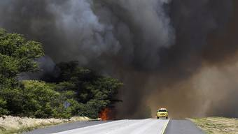 Rauchwolke über Maui: Ein Buschfeuer führt auf der zu Hawaii gehörenden Insel zu Evakuationen.