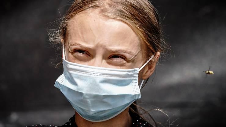dpatopbilder - Eine Wespe nähert sich der Klimaaktivistin Greta Thunberg während einer Pressekonferenz. Zuvor wurde Thunberg zusammen mit weiteren Klimaaktivitinnen von Fridays for Future von der Bundeskanzlerin zu einem Gespräch empfangen. Foto: Kay Nietfeld/dpa