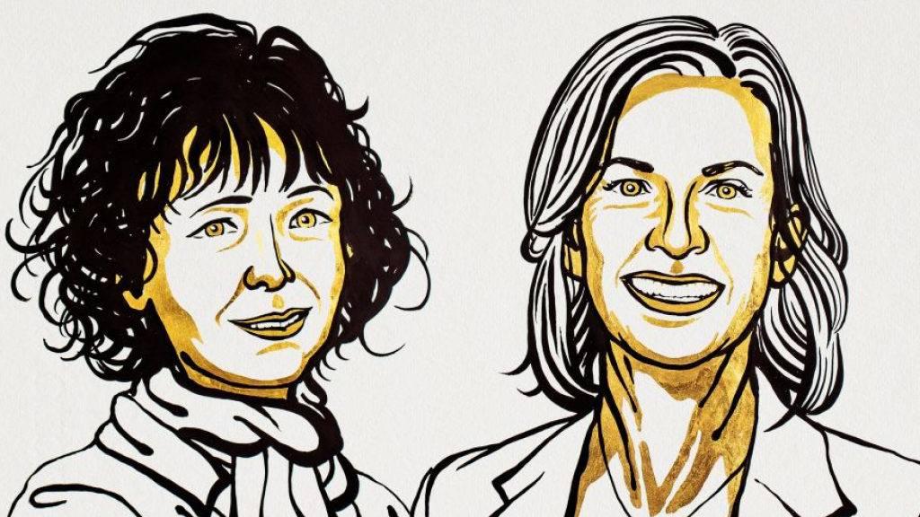 Chemie-Nobelpreis für Entwicklung der Genschere