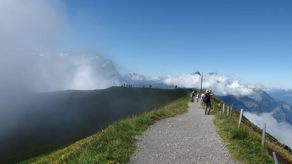 Ferientipp: Bergweltfaszination Alpentower