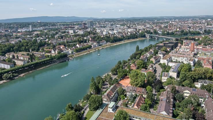 Laut der Rheinschutzkommission sollen in sieben Jahre wieder Lachse bis nach Basel kommen.