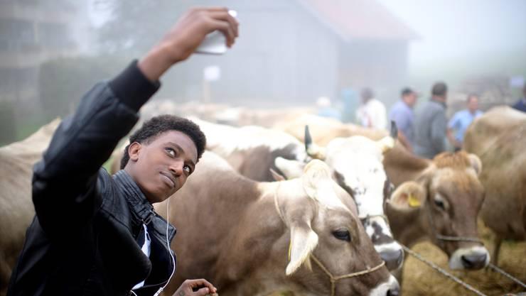 Sind sie Lügner, sind sie Verfolgte, sind sie ganz anders, als wir alle denken? Eines ist klar: Die Stimmung gegenüber den Eritreern droht in der Schweiz zu kippen.