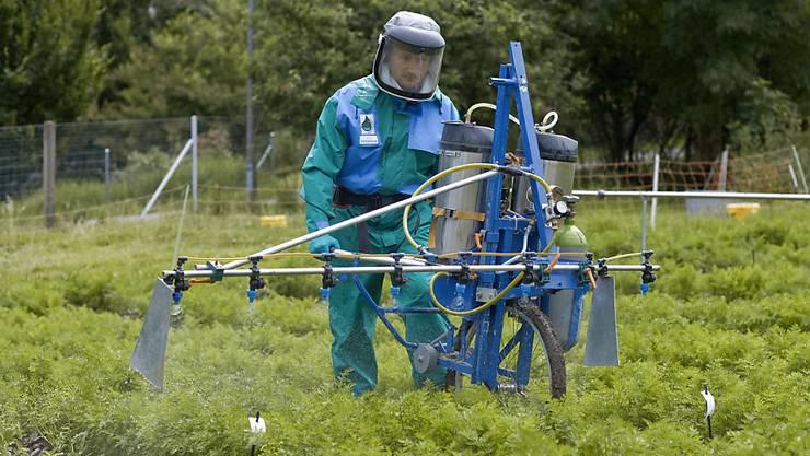 Seit den 70er-Jahren wird Chlorothalonil in der Landwirtschaft eingesetzt. Nun prüft der Bund ein Verbot des Pflanzenschutzmittels. Auch im Trinkwasser von Obersiggenthal ist es neu nachgewisen. (Symbolbild)
