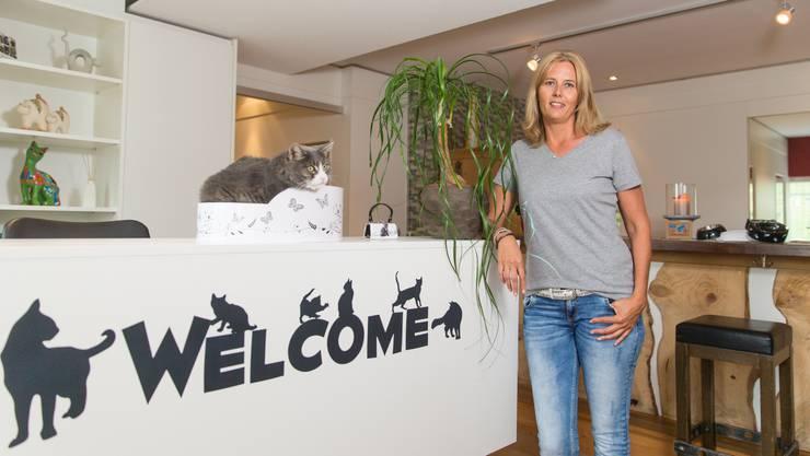 Nicole Frei wollte schon immer mit Katzen arbeiten. Mit ihrem Büsihotel hat sie sich auf der «Wampfle» einen Traum erfüllt.