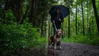 40 Wanderer trotzen dem Regen – «dem Hund ist egal, was für Wetter ist»