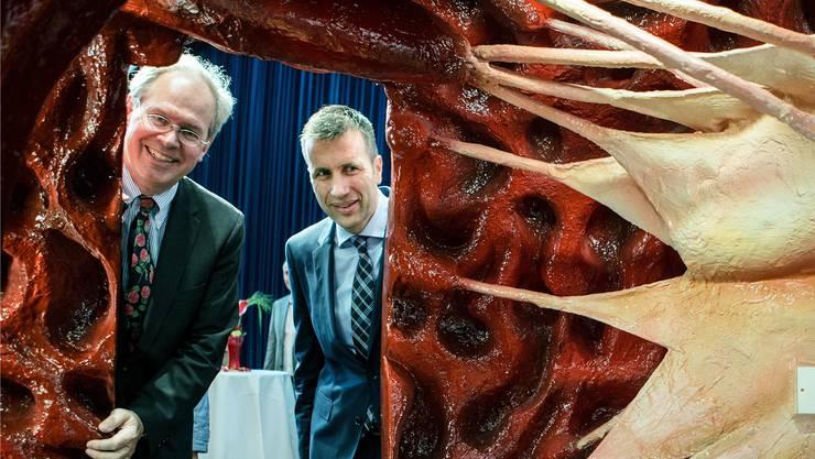Herzchirurg Thierry Carrel (links) und Klinikdirektor Philipp Keller schauen in ein begehbares Herzmodell.