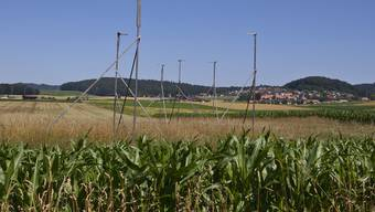 Die Solothurner Bauern wollen dem Verlust von Kulturland mit zusätzlichen gesetzlichen Regeln entgegenwirken. (Symbolbild)