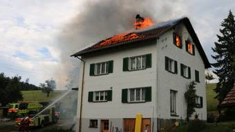 Ein Grossaufgebot verschiedener Feuerwehren bekämpfte am Mittwoch den Brand in Zwillikon.