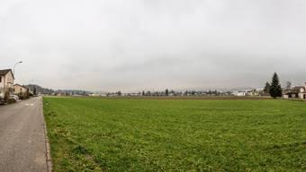 Das Gebiet Steinfeld ist von Häusern umgeben und mit öffentlichen Verkehrsmitteln gut erschlossen.