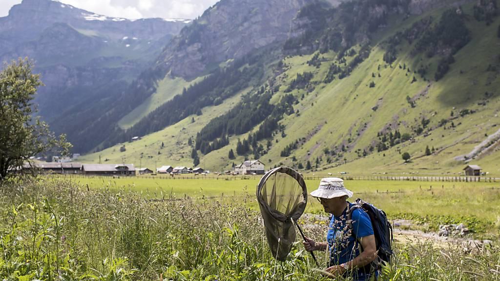 Ständeratskommission: Bundesrat muss mehr tun für Artenvielfalt