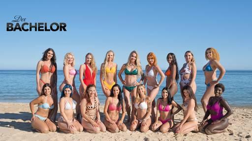 Das sind die neuen Ladies!