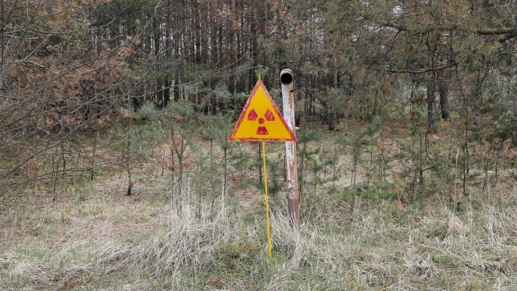 Osteuropäische Staaten wollen Klimaschutz durch Kernkraft
