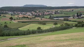 Mögliche (Teil-)Standorte für den Wenslinger Golfplatz wären hier in der Bildmitte zwischen Gewächshäusern und Schiesshäuschen (links) oder am oberen rechten Bildrand unterhalb des Waldes zustande gekommen. Nun ist das Projekt aber gestorben.