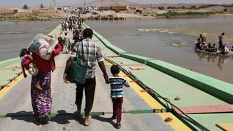 Jesidische Flüchtlinge an der irakisch-Syrischen Grenze (Archiv)