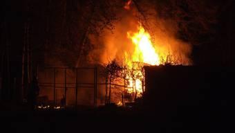 Der Brand im Bienenhaus wurde vermutlich absichtlich gelegt.