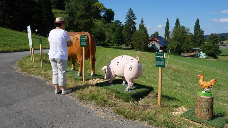 Woher kommt welches Stück Fleisch? Besucher des «Buurelandwegs» erfahren es dank lebensgrossen Tierfiguren.