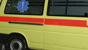 Ein Ambulanzfahrzeug: Jede Hilfe kam für den Zweijährigen zu spät (Symbolbild)