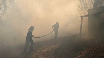 Im Osten der griechischen Insel Samos wütet derzeit ein Waldbrand in der Nähe von Hotels. (Symbolbild)