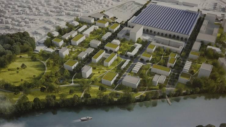 Das in Planung stehende Riverside-Quartier mit dem Park (links) könnte für die Region zum Vorzeigeobjekt in Sachen Energieeffizienz und erneuerbaren Energien werden. Peter Baumann will die Eigentümer davon überzeugen, mit dem neuen Quartier das Label «2000-Watt-Areal» anzupeilen.