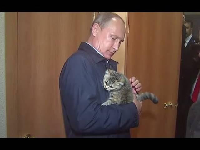 Putin und die Katze