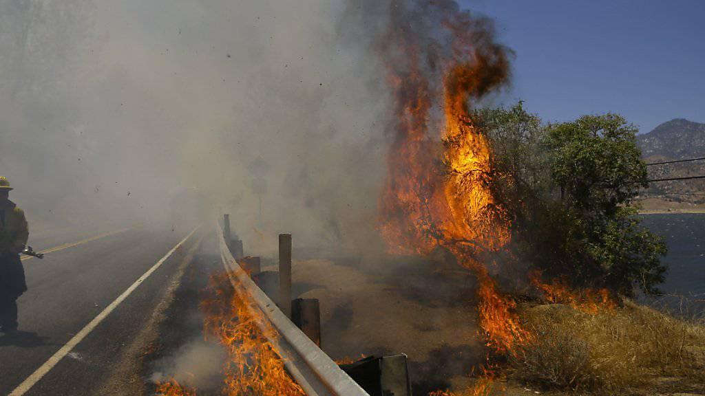 Kampf dem Feuer am Ufer des Lake Isabella in Kalifornien: Bei schweren Busch- und Waldbränden sterben mindestens zwei Menschen.