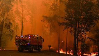 Megabrand nahe Sydney Australien