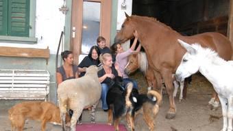Der Gnadenhof Kaisten bietet vielen Tieren ein Zuhause auf Lebzeiten.