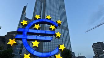 Blick auf das Gebäude der EZB in Frankfurt (Archiv)