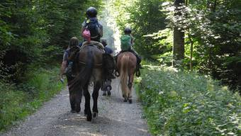 Das Mädchen sass auf einem geführten Pferd. (Symbolbild)