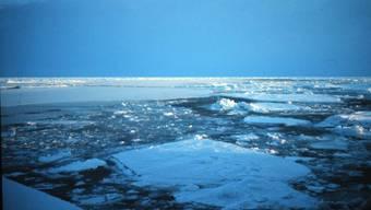 Am Nordpol ist es wärmer als in Südkalifornien – und das im Winter. (Symbolbild)