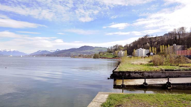 Hier führt der neue Uferweg vorbei Bootsanlegestelle zwischen Wädenswil und Richterswil.