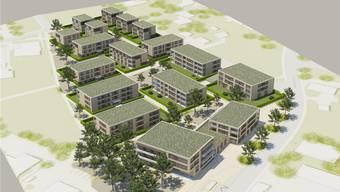 Die von der Oase-Gruppe angrenzend an den heutigen Obergösger Dorfkern geplante Überbauung Steinengasse mit 17 Baukörpern; rechts die als Alters- und Pflegeheimvorgesehenen Gebäude an der Lostorferstrasse (Visualisierung).