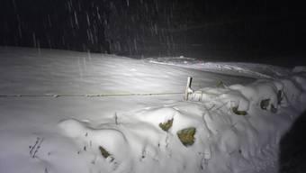 Auf dieser mit Schnee bedeckten Wiese kam es zur Verwechslung, die für den Hund tödlich endete.