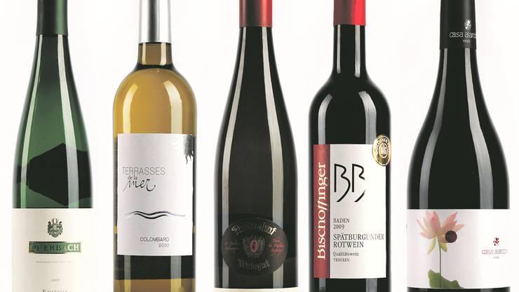 Die Gestaltung der Etikette weist auch auf die Philosophie des Weines hin.