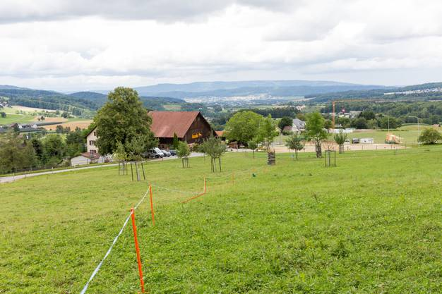 Blick auf den Hof in Aesch, dahinter Birmensdorf und das Limmattal.