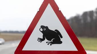 Der Schweizerische Tierschutz fordert Autofahrende zur Vorsicht wegen der Amphibien-Wanderung auf.
