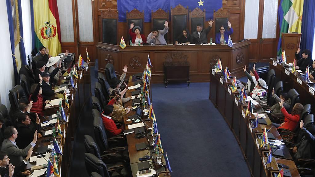 Boliviens Parlament macht Weg für Neuwahl frei – ohne Morales