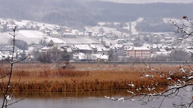 Nach Schneefall ist das Naturparadies Klingnauer Stausee in eine weisse Schneepracht gehüllt. Blick vom Kleindöttinger Ufer in Richtung Klingnau.