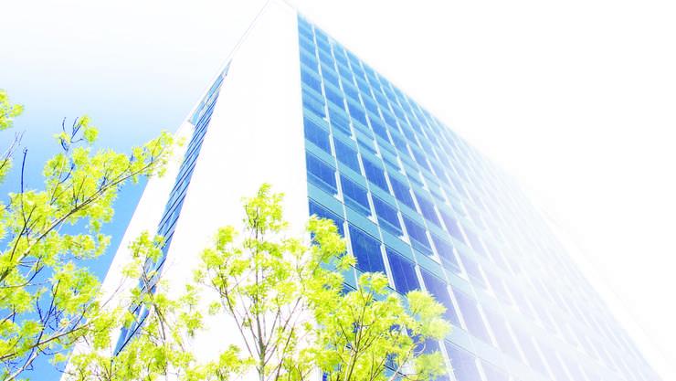 Im Schlatter-Hochhaus an der Brandstrasse haben Start-ups ab nächster Woche die Möglichkeit, Büroplätze in der zehnten Etage mit Blick nach Zürich zu mieten.