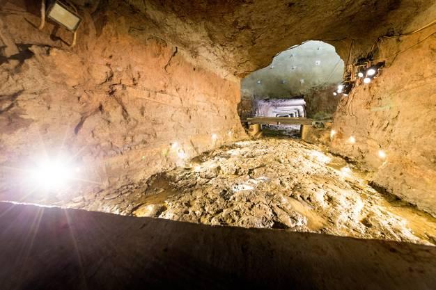 Eher zufällig ist man in Bergwerk Herznach in einem Seitenstollen auf einen rund 160 Millionen Jahre alten Meeresboden gestossen, der mit Hunderten von Ammoniten übersät ist. Geologen bezeichnen diesen Meeresboden in seiner Art als «einzigartig». Aufgenommen am 21. März 2018 anlässlich einer Pressebesichtigung im Bergwerk in Herznach.
