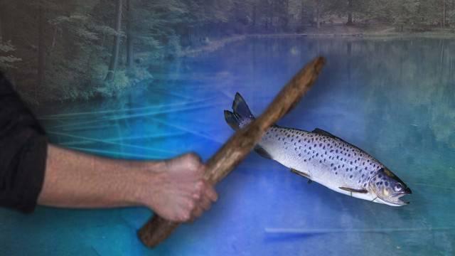 Tierquälerei-Vorwürfe gegen Blausee