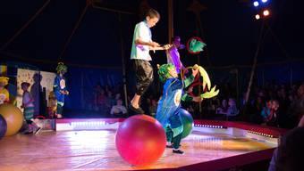 Circus Biber, Arni
