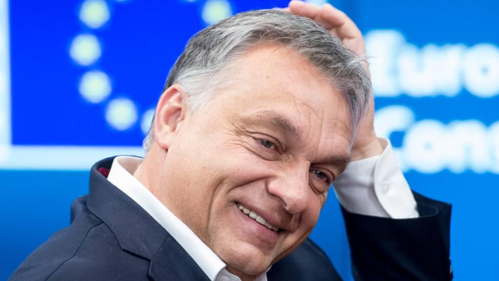 Ungarns Ministerpräsident Viktor Orban strebt ein neues Bündnis an.