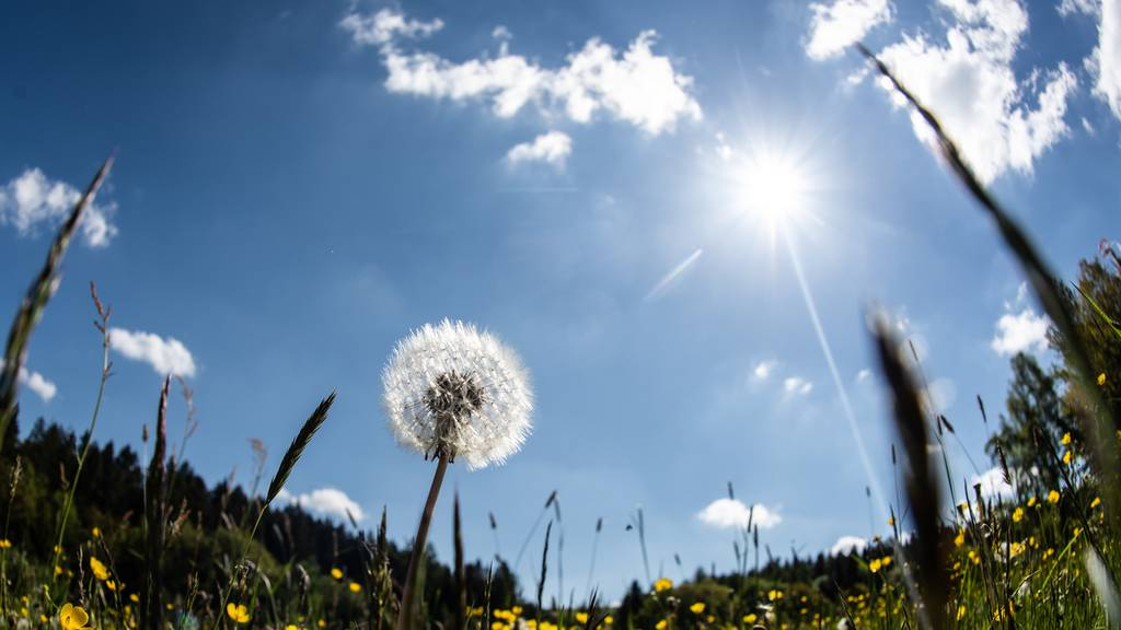 Erster Hitzetag im Wallis mit 30 Grad in Visp