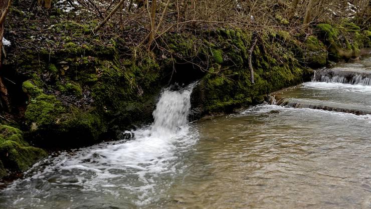 Von der Kläranlage ARA Frenke 2 in Niederdorf floss verschmutztes Wasser in die Vordere Frenke und bedrohte das Grundwasser.