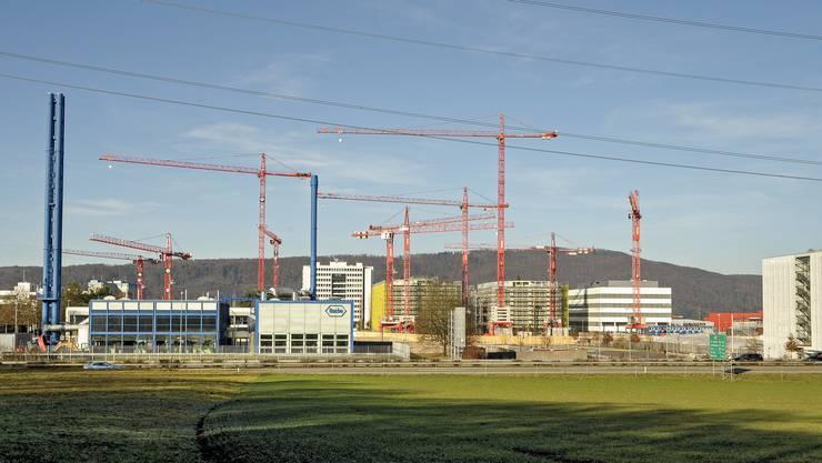 Die Pharmaindustrie sorgt für Grossinvestitionen der Region. Im Bild die Baustelle von Roche in Kaiseraugst neben der Autobahn.