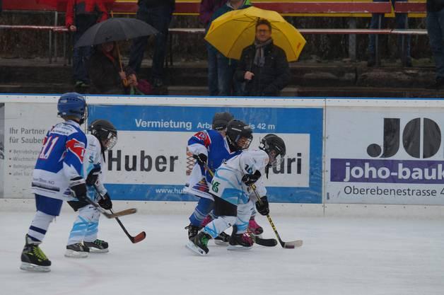 Impressionen vom Piccolo- und Bambini-Eishockey-Turnier in Wohlen