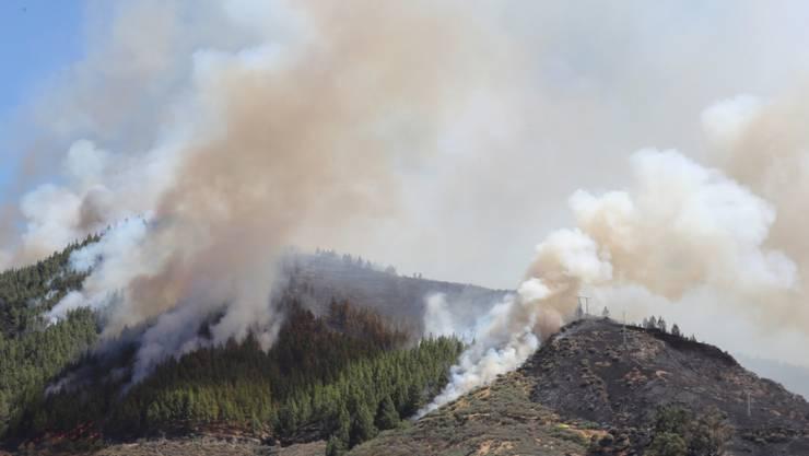 Die Rauchsäulen des Waldbrandes auf Gran Canaria sind auch von der Nachbarinsel Teneriffa aus zu sehen.