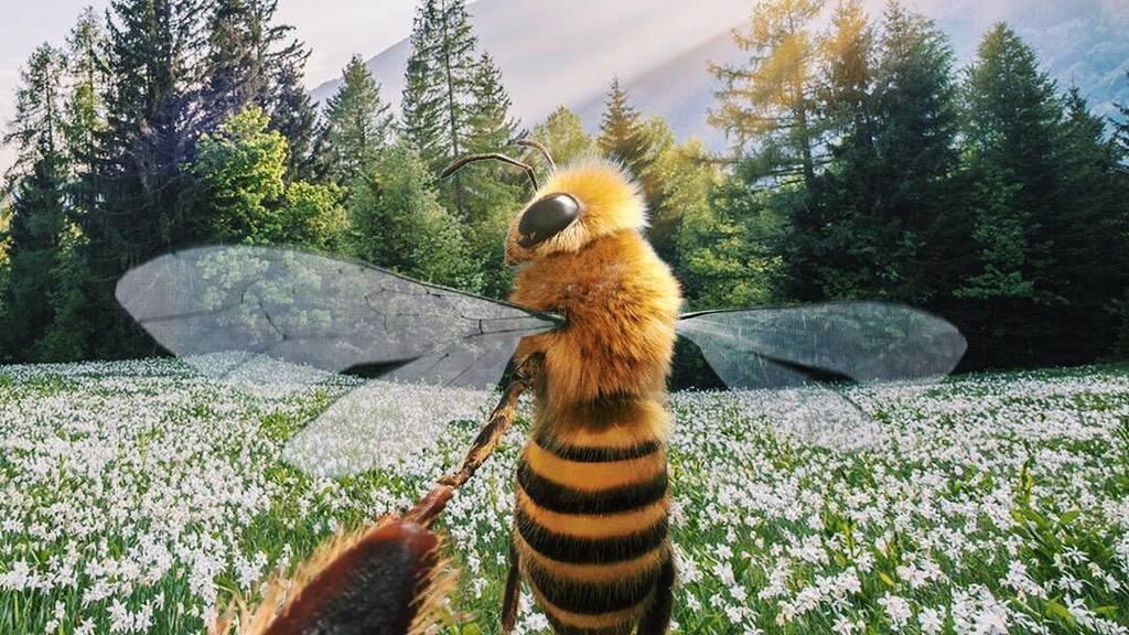 Eine Biene wird zur Influencerin